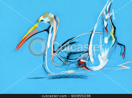 pelican painting stock photo,  Original pastel and  hand drawn painting or  working  sketch of pelican .Free composition by borojoint