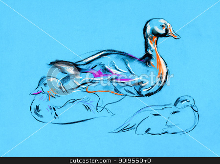 Duck painting stock photo,  Original pastel and  hand drawn painting or  working  sketch of duck.Free composition by borojoint