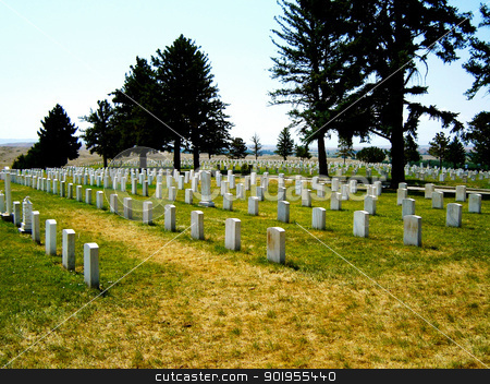Military cemetary stock photo,                                 by Liane Harrold