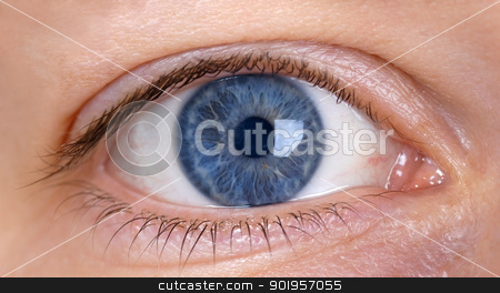 Blue eye from a woman stock photo, Eye from a woman by Picturehunter