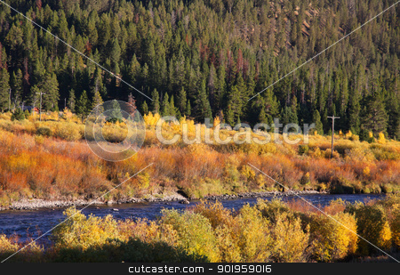 Autumn in Yellow stone stock photo, Beautiful autumn scene in Yellowstone by Sreedhar Yedlapati