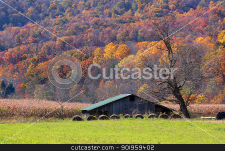 Farm in autumn stock photo, Farm lands in Appalachian mountains of West Virginia  by Sreedhar Yedlapati