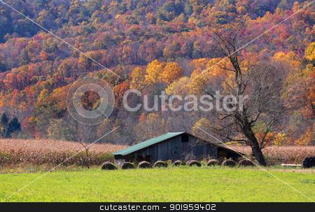 Farm in autumn stock photo, Farm lands in Appalachian mountains of West Virginia  by Sreedhar Yedlapati