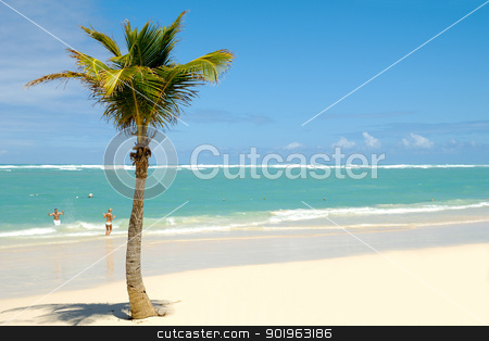 Exotic beach stock photo, Palm on exotic caribbean beach with the coast in the background. In the water a man and a woman is going to swim. by Lars Christensen