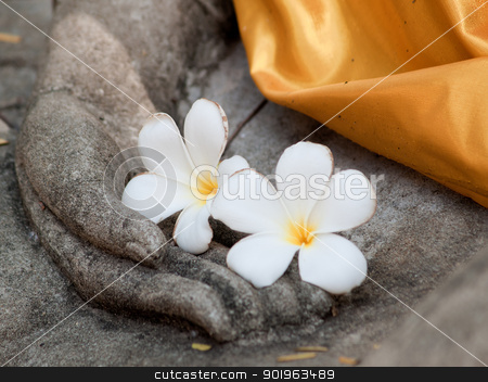 plumeria flower on ancient hand of buddha statue stock photo, plumeria flower on ancient hand of buddha statue by jakgree