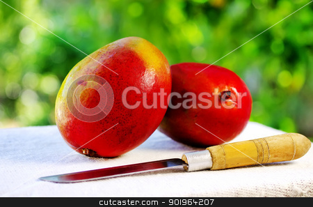 Two mangoes fruits and knife. stock photo, Two mangoes fruits and knife. by Inacio Pires