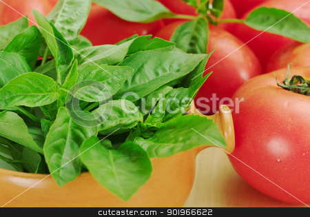 Basil and Tomatoes stock photo, Basil in a soup bowl with tomatoes around it by Ildi Papp