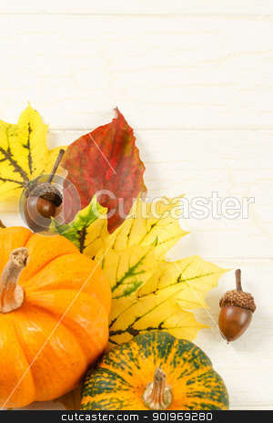 Fall Leaves With Gourds And Accorns stock photo, Overhead view of traditional Fall gourds with leaves and acorns on an aged white wood background with copy space at top by Karen Sarraga