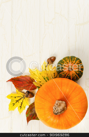 Pumpkin, Gourd And Acorns With Colorful Leaves  stock photo, Overhead view of pumpkin with traditional Fall red and yellow leaves, gourds and acorns against aged white wood with copy space at top by Karen Sarraga