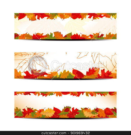Set of Colorful Autumn Leaves Banner or Web Header stock vector clipart, Set of Colorful Autumn Leaves Banner or Web Header by meikis