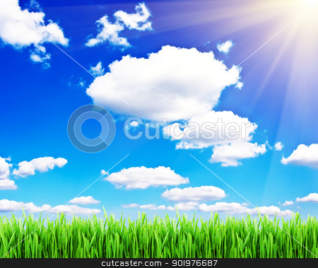 Spring background stock photo, Green grass under blue sky with clouds and spring sun by Alexey Popov