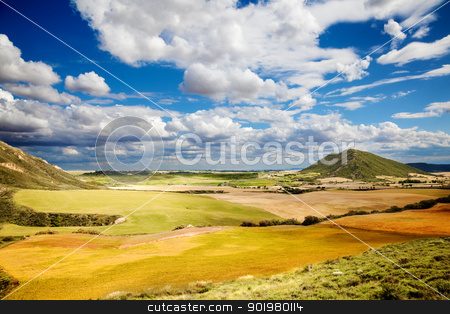 Wheat field landscape  stock photo, Landscape with fields and blue sky with clouds by carloscastilla
