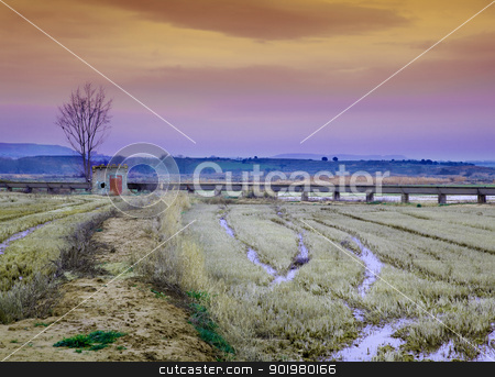 Idyllic landscape  stock photo, Idilic landscape with little house,water channel and harvest field by carloscastilla