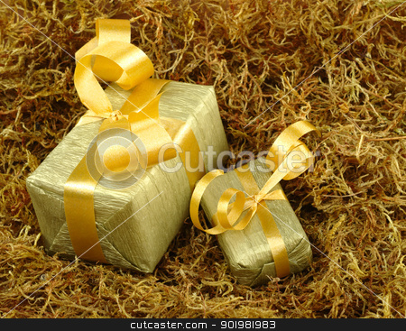 Golden Presents stock photo, Boxes wrapped in golden paper with golden ribbon on brown moss (Selective Focus, Focus on front) by Ildiko Papp