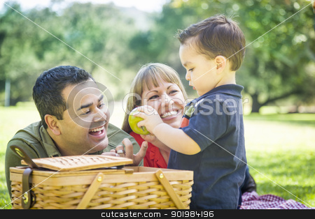 Mixed Race Family Enjoy a Picnic At The Park stock photo, Happy Mixed Race Family Enjoy a Picnic At The Park. by Andy Dean