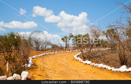 Savana road stock photo, Kenya. Blue sky on this orange road in the middle of African Savana, Tsavo East National Park by Perseomedusa