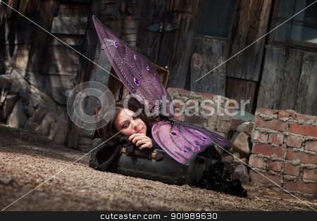 Resting Fairy stock photo, Beautiful faery rests on suitcase with black roses by Scott Griessel