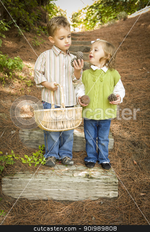 Two Children with Basket Collecting Pine Cones Outside stock photo, Adorable Brother and Sister Children with Basket Collecting Pine Cones Outside. by Andy Dean