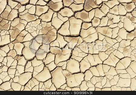 Dry soil stock photo, Detail of a cracked dry soil in water shortage time by Manuel Ribeiro