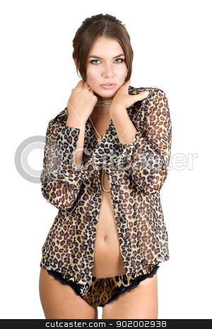 Portrait of the beautiful young woman stock photo, Portrait of the beautiful young woman in leopard shirt by Sergii Sukhorukov