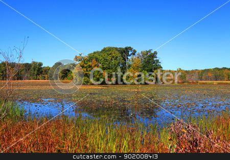 Kent lake stock photo, Autumn reflections in Kent lake near Detroit by Sreedhar Yedlapati