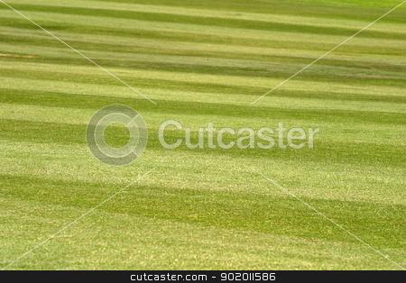 Grass stock photo, Wide open field of cut green grass. by Henrik Lehnerer