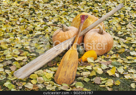 old paddles and pumpkin stock photo, vintage canoe paddles with pumpkin and squash in autumn scenery by Marek Uliasz