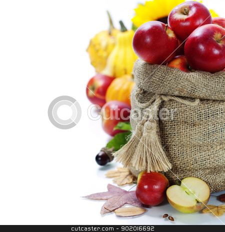 Harvest time stock photo, Burlap sack with apples over white. With copyspace  by klenova