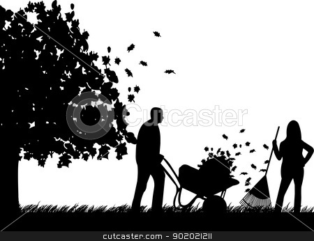Couple raking leaves in autumn or fall in garden or yard under the tree silhouette