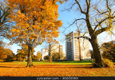Beautiful, sunny autumn in Falkirk, Scotland stock photo, Beautiful, sunny autumn in Falkirk, Scotland, UK by Juliet Photography