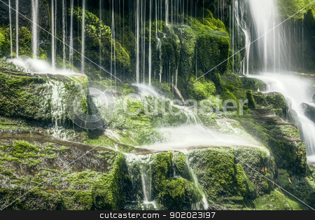 Tasmanian Waterfall stock photo, An image of a beautiful Tasmanian Waterfall by Markus Gann