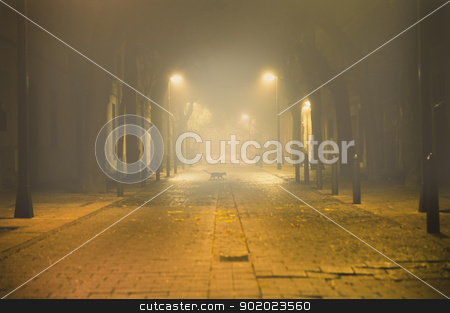 fog cityscape stock photo, Night urban cityscape with fog and black cat  by carloscastilla