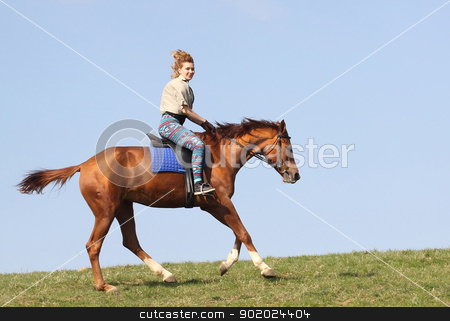 Girl on horseback stock photo, Girl on a horse of the Don breed by Yulia Chupina