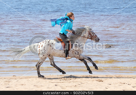 Girl and horse stock photo, Girl in silk scarf rides a Altai horse of the shore of the Gulf of Finland by Yulia Chupina