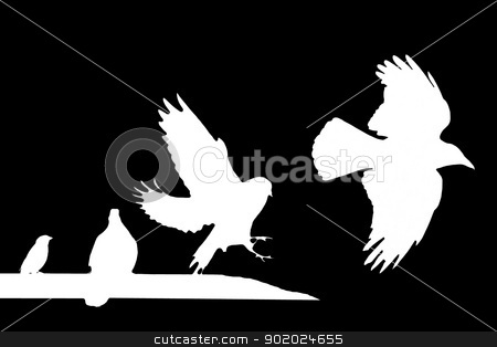Birds (raven, doves, sparrow) stock photo, Silhouettes of birds (raven, doves, sparrow) by Yulia Chupina