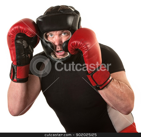 Fighter In Guard Position stock photo, Tough male boxing fighter in defensive guard over white by Scott Griessel