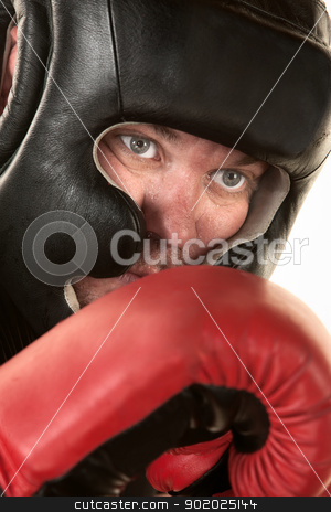 Close Up of Boxer Face stock photo, Male boxer with headgear close up over isolated background by Scott Griessel