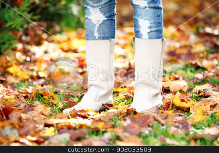 Walking through the autumn leaves stock photo, Walking through the autumn leaves, closeup by yekostock