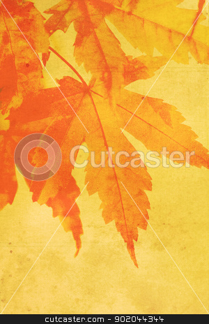 Old, stained, dreamy, autumnal background  stock photo, Old, stained, dreamy, autumnal background  by Juliet Photography