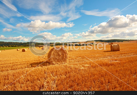 Scenic landscape with haybales stock photo, Scenic landscape with haybales on Summer day by Juliet Photography