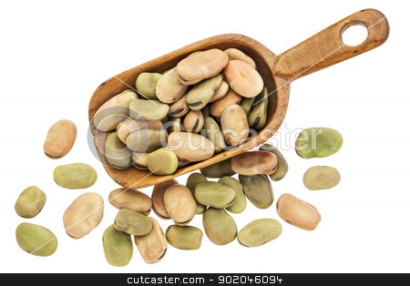 fava (broad) beans stock photo, fava or broad beans on rustic wooden scoop isolated on white by Marek Uliasz
