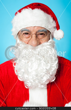 Profile shot of smiling Father Santa stock photo, Merry Christmas, Profile shot of smiling Father Santa. by Ishay Botbol