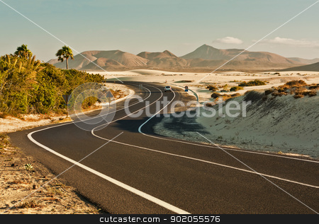 Winding Road in Desert stock photo, Winding road across the dunes of Corralejo, Fuerteventura, in the Canary Islands, Spain. by Brigida Soriano