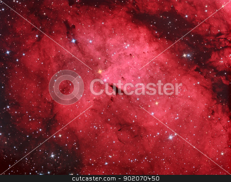 IC1318 Gamma cygni nebula stock photo, diffuse emission nebula surrounding Sadr or Gamma Cygni by Reinhold Wittich