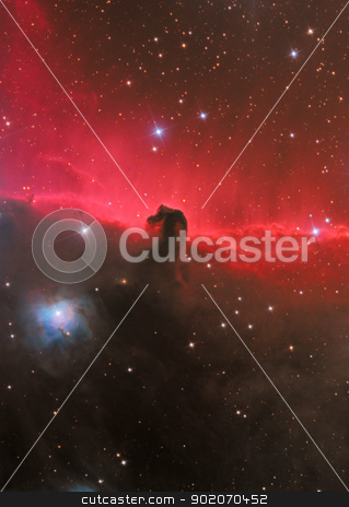 HorseHead Nebula stock photo, dark nebula in constellation Orion by Reinhold Wittich