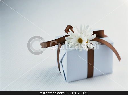 Gift Box stock photo, Gift Box by Tornelli Stefano