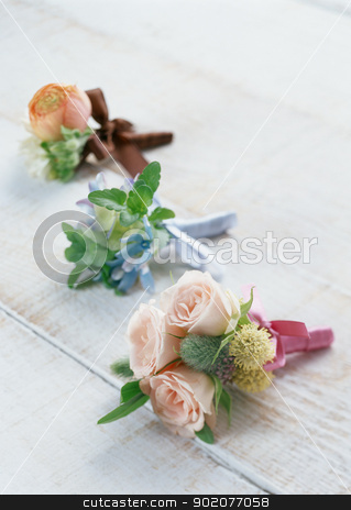 Gift Flowers stock photo, Gift Flowers by Tornelli Stefano