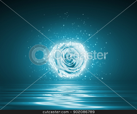 Beautiful flower stock photo, Beautiful white flower above water with reflection by Sergey Nivens
