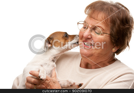 Happy Attractive Senior Woman with Puppy on White stock photo, Happy Attractive Senior Woman with Puppy Isolated on a White Background. by Andy Dean