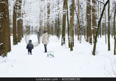 winter forest  stock photo, beautiful winter forest  and the road by Vitaliy Pakhnyushchyy